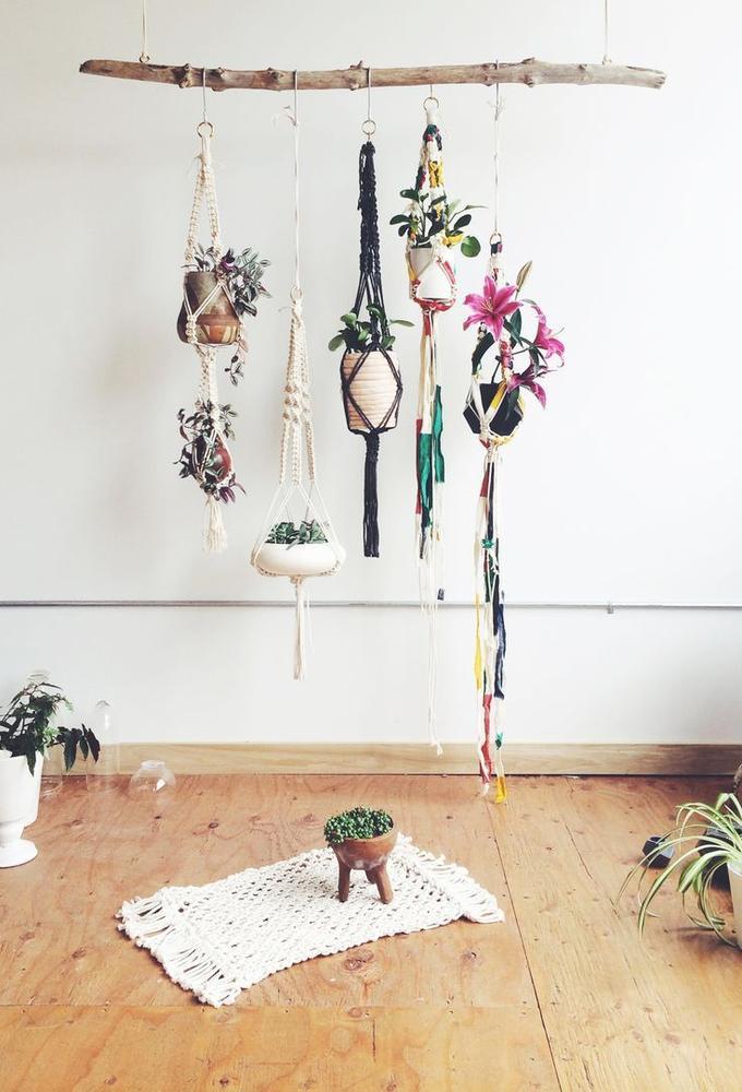 Tak Met Planten Hangers Ook Leuk Voor Raam Takken En Stammen Verkrijgbaar Op Webshop Decoratietakken Foto Geplaatst Door Webshop Www Decoratietakken Nl Op Welke Nl