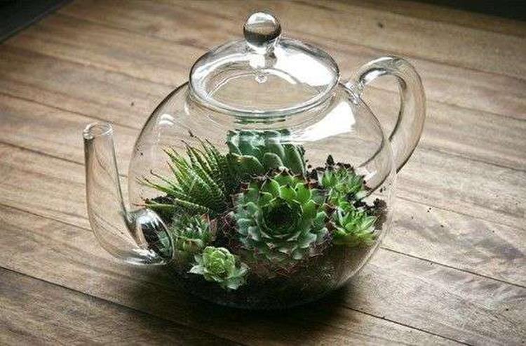 Glazen theepot als mini plantenwereld.1384089341 van mathilde.mathilde.39