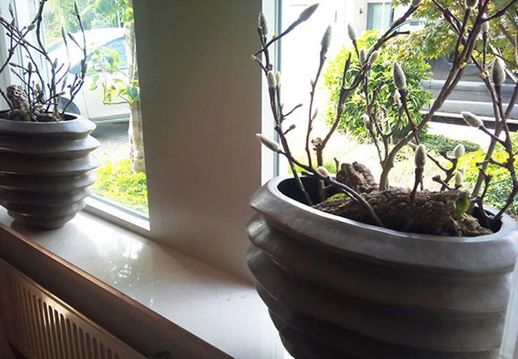 Leuke decoratie voor op de vensterbank for Decoratie voor de raam