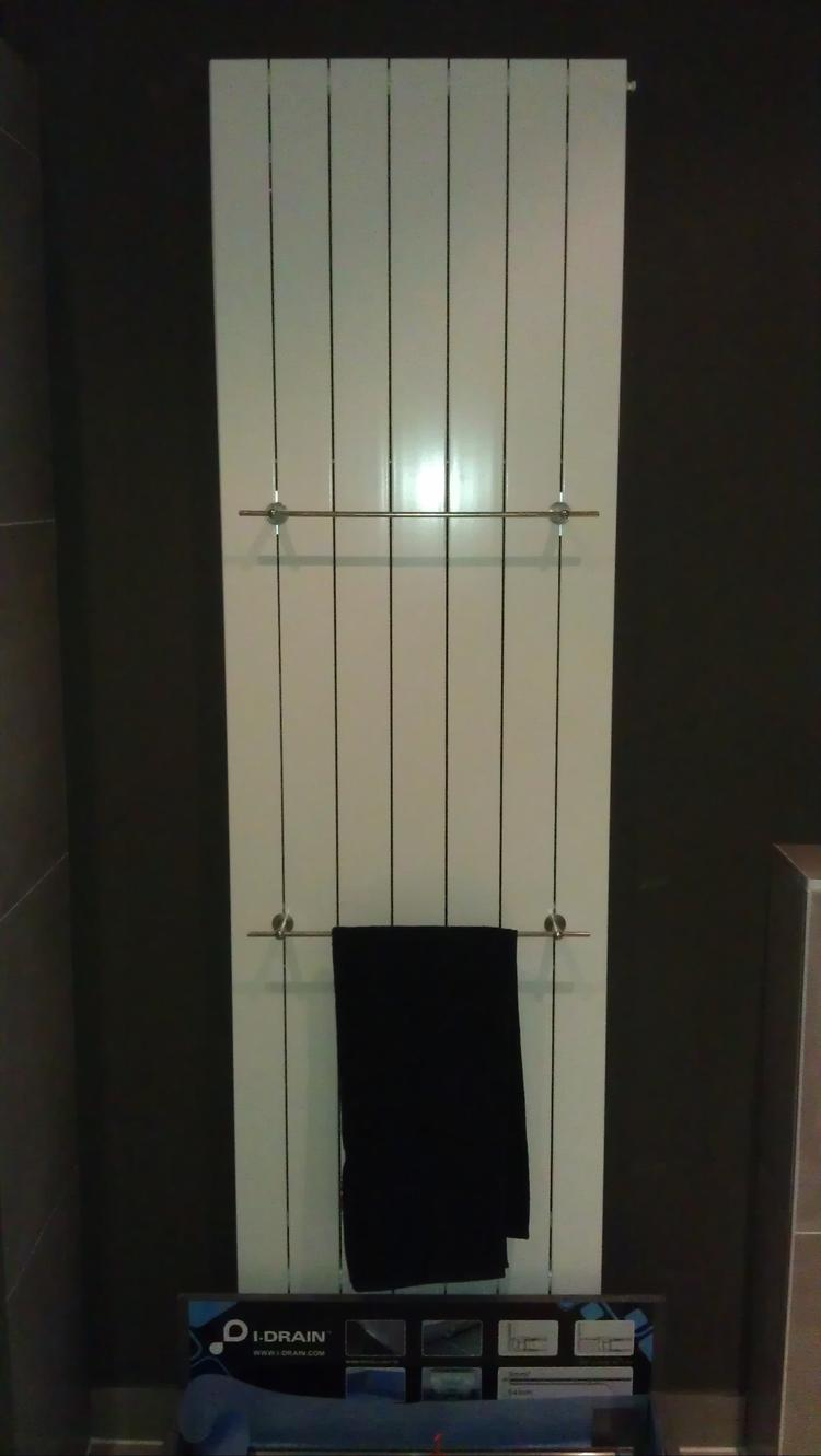 Mooie designradiator, voor de badkamer of elders in huis. Zilveren ...