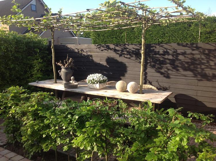 Mooi in een kleine tuin foto geplaatst door gisela op welke