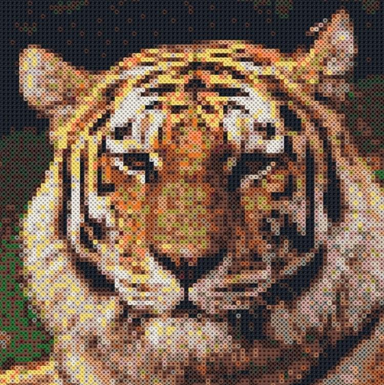 Schilderij Met Eigen Foto.Photopearls Strijkkralen Patroon Tijger Maak Van Uw Eigen