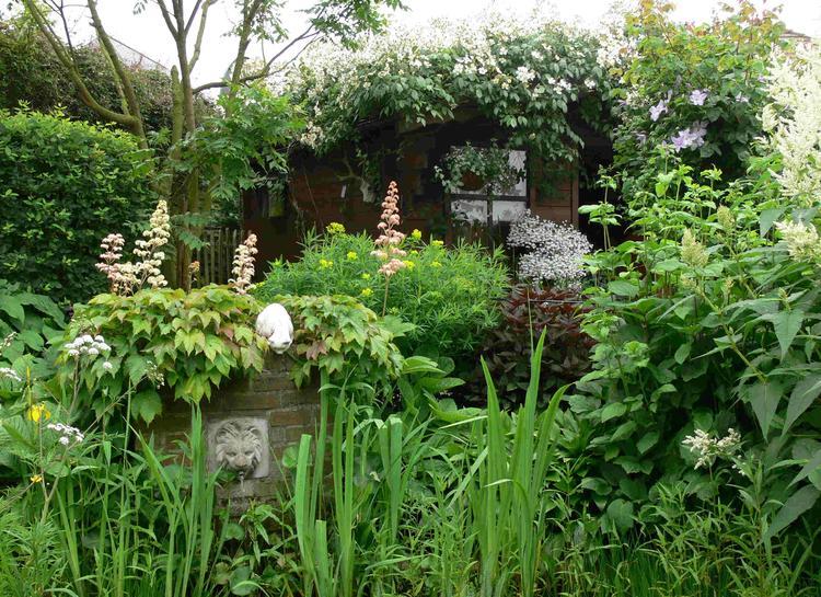 New Engelse/wilde/romantische tuin. Schuurtje laten overgroeien, veel &TZ74
