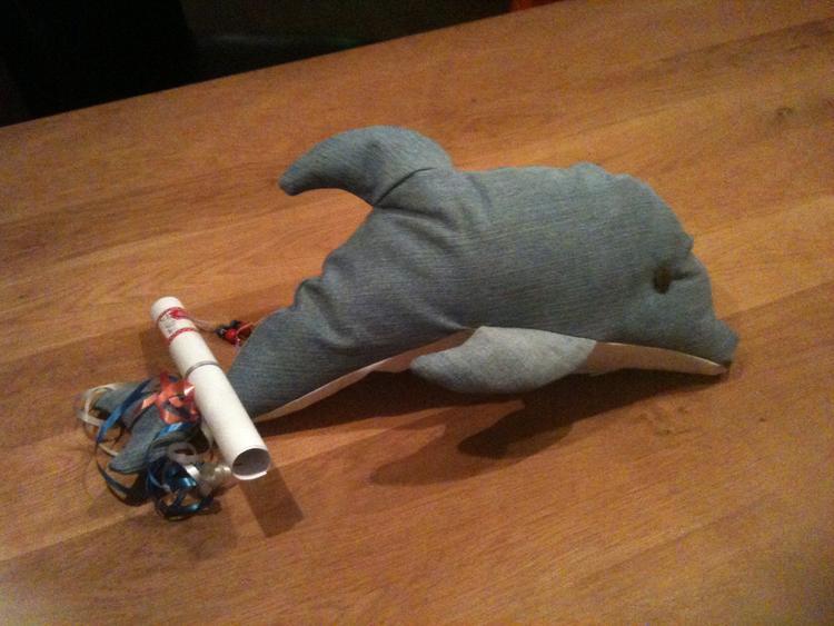 Surprise 2014 Dolfijn Van Een Oude Spijkerbroek Patroon Gevonden