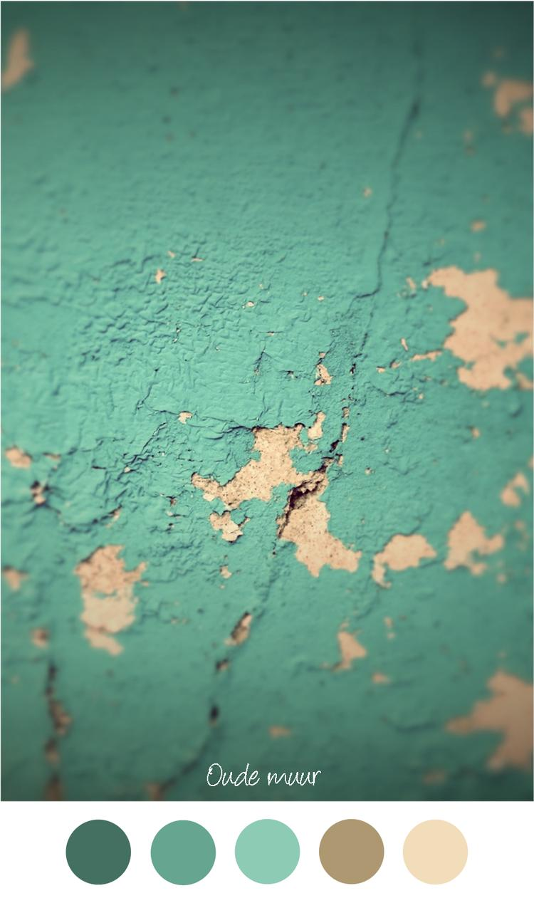OUDE MUUR - Mooie oude verweerde muur in groen / petrol en beige ...
