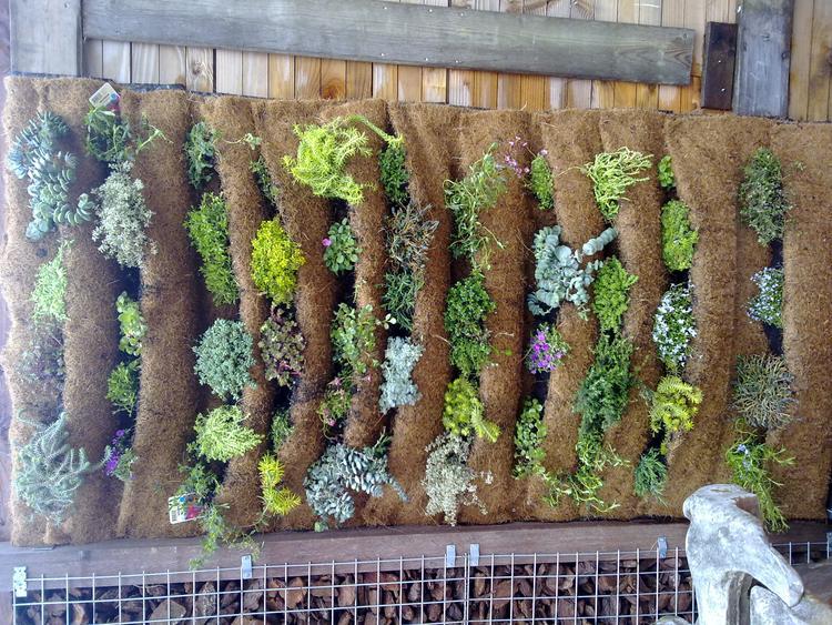 Verticale Tuin Maken : Simpel op je oude schutting te maken een verticale tuin voor