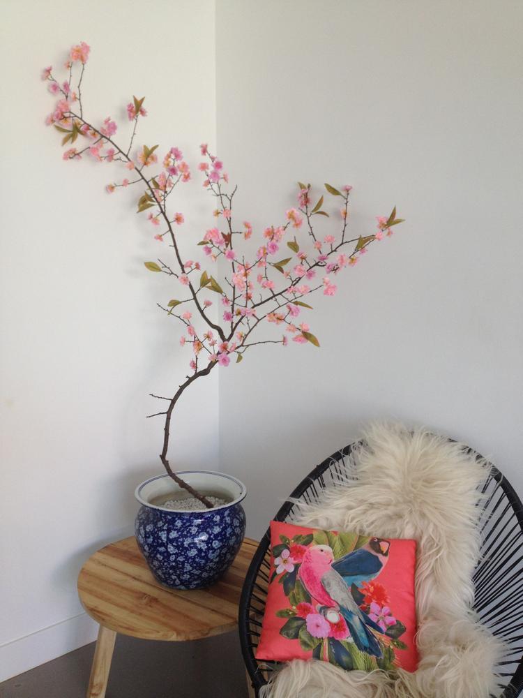 https://cdn4.welke.nl/cache/crop/750/auto/photo/35/63/83/Mooie-japanse-bloesemboom-van-180-cm-hoog-Gezien-op-eigen-huis-en.1435667368-van-masquelle.jpeg