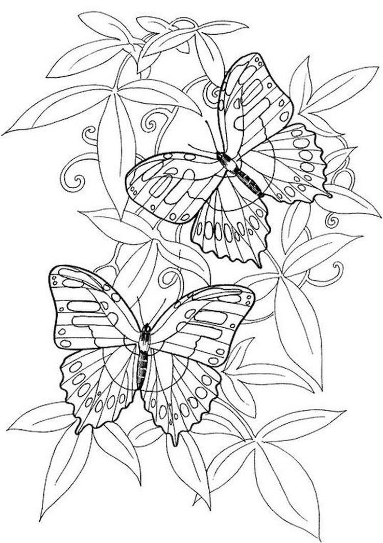 kleurplaat hartje vleugels leuk voor hart met