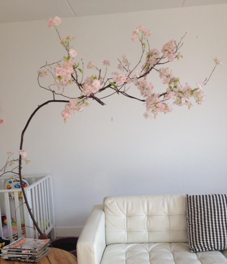 https://cdn4.welke.nl/cache/crop/750/auto/photo/36/57/70/Mooie-bloesemboom-met-zachtroze-bloesem-Wil-jij-ook-zo-n-mooie.1437726148-van-masquelle.jpeg