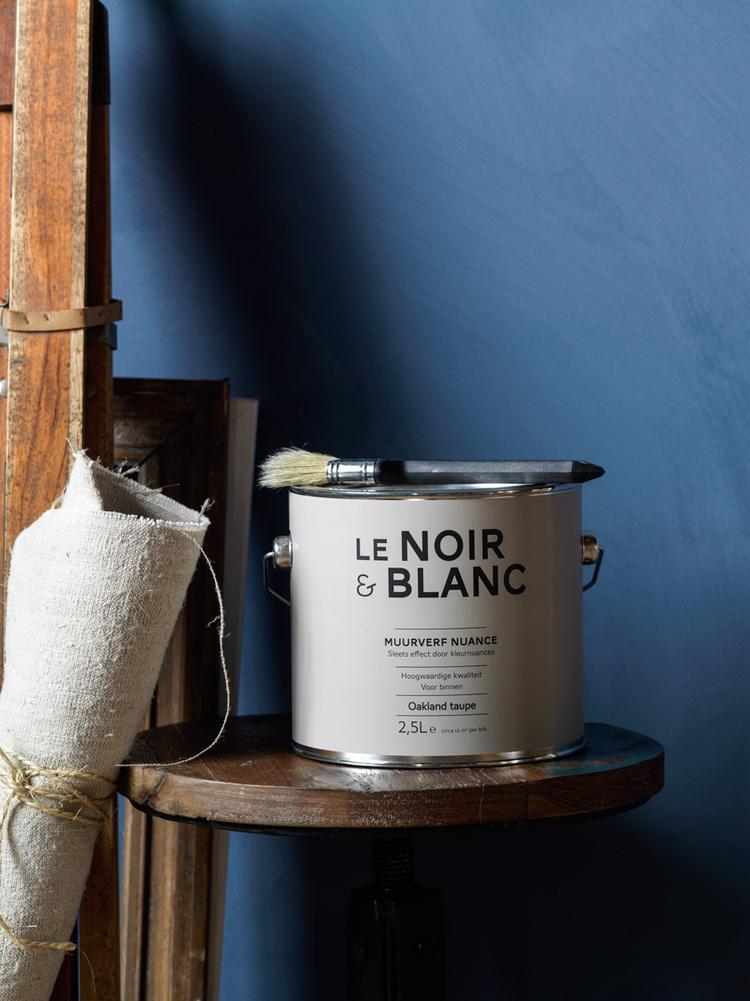 Schilderij Plank Karwei.Karwei De Le Noir Amp Blanc Muurverf Is Onderdeel Van Een Zeer
