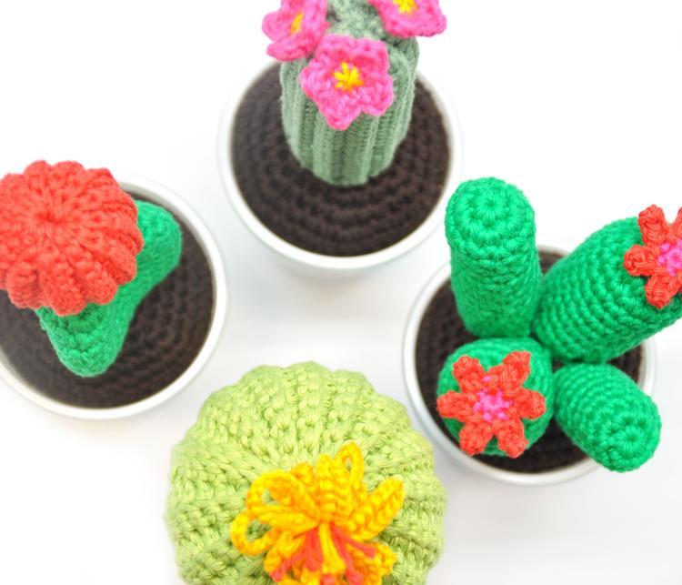Cactus Haken Gratis Cactus Haakpatroon Wolplein Foto Geplaatst