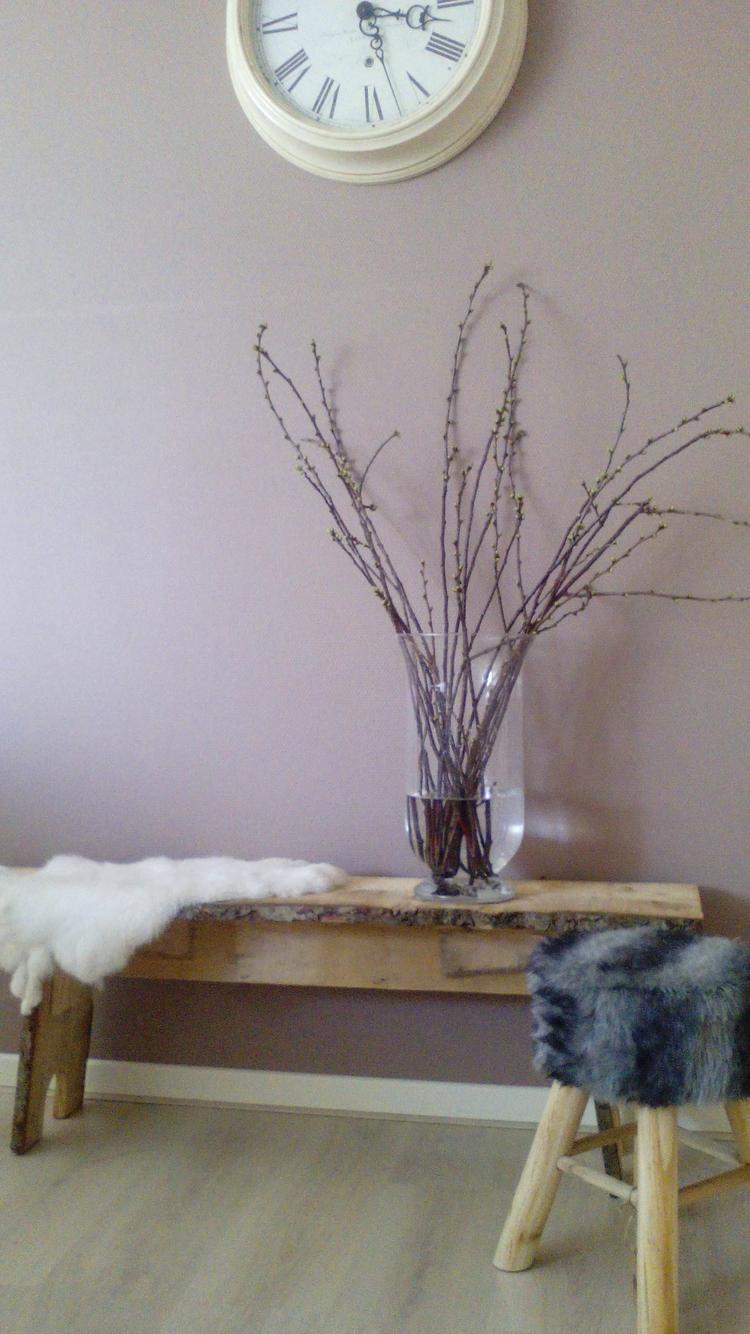 https://cdn1.welke.nl/cache/crop/750/auto/photo/42/47/80/De-lente-in-huis-halen-door-bijvoorbeeld-magnoliatakken-of.1455724651-van-Juudd09.jpeg