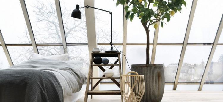 Een plant in de slaapkamer.. Foto geplaatst door Maura_l op Welke.nl
