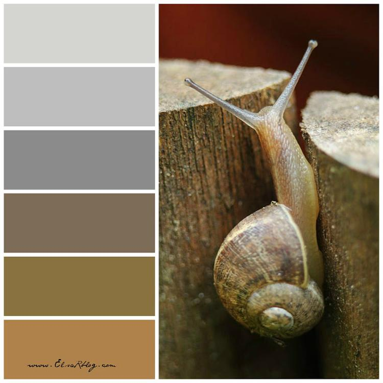 bruin grijs en taupe zijn 3 populaire kleuren die in ons interieur worden gebruikt samen maken ze een heel bijzondere sfeer in jouw interieur