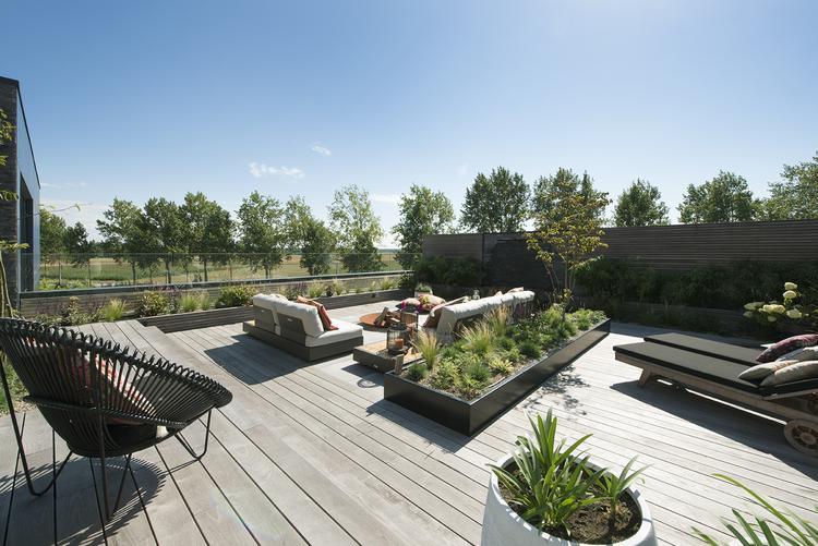 Weids uitzicht vanaf modern dakterras foto geplaatst door studio