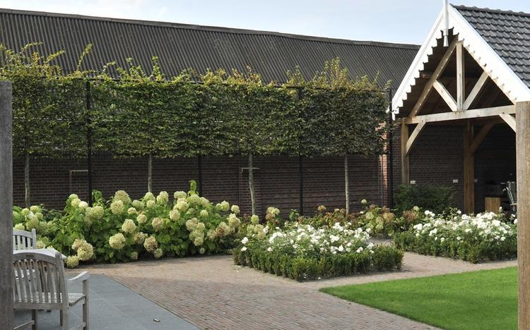 Uitzonderlijk Bestrating tuin & terras. Foto geplaatst door Lien8 op Welke.nl #GL07