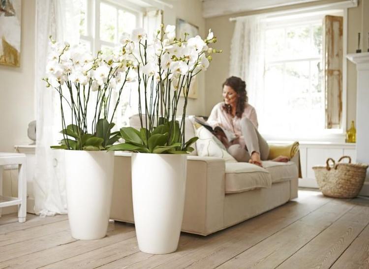 Grote witte vaas. . Foto geplaatst door meinaart op Welke.nl