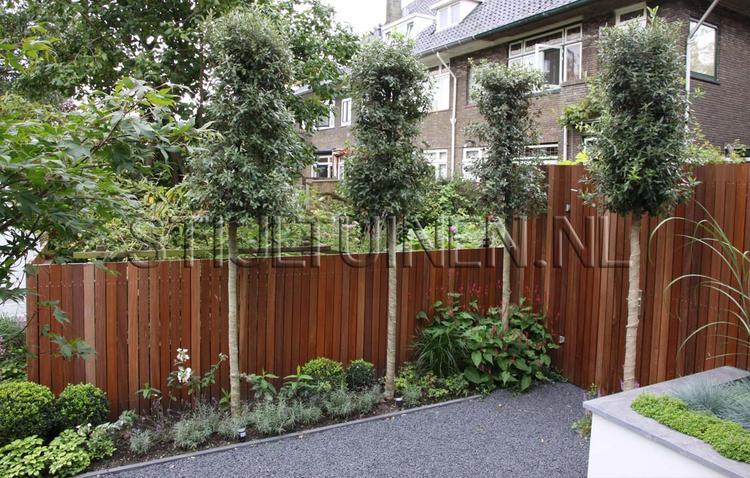 Tuin afscheiding hout met groen foto geplaatst door tjitske op