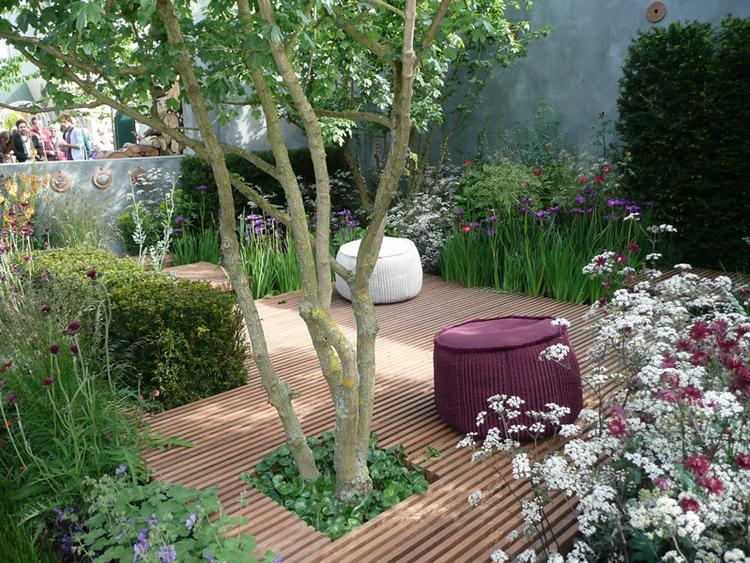 Boom Kleine Tuin : Kleine boompjes voor in de tuin als de afstand naar het nieuwe