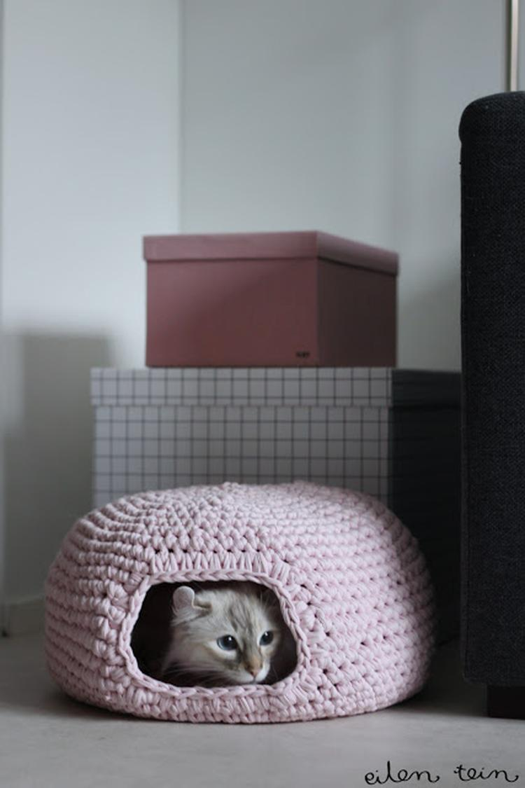 Kattenmand Geen Nederlands Patroon Foto Geplaatst Door Ilssvg Op