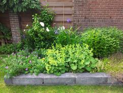 Leuke tuin indeling foto geplaatst door flip op welke
