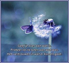 mooie gedichten en spreuken Collectie: spreuken, verzameld door dalike op Welke.nl mooie gedichten en spreuken