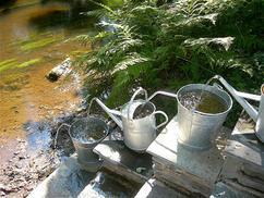 Leuk waterelement voor in de tuin