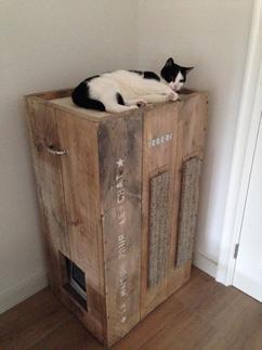 kattenhuis krabpaal kattentoilet en mandje in n