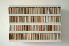 De Leukste Ideeën Over Boeken In Kast Vind Je Op Welkenl