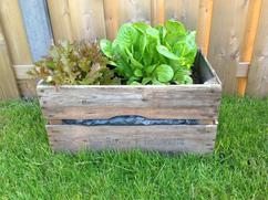 Moestuin Zelf Maken : Tuindecoratie voor aan muur lovely diy zelf een plantenbak maken
