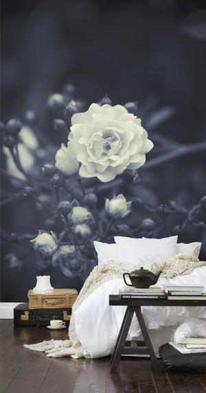 Mooi behang voor de slaapkamer.. Foto geplaatst door anja op Welke.nl